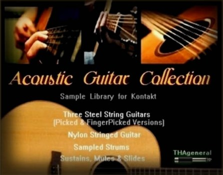 http://www.musicantoff.net/images/stories/indiginus%20acoustic%20guitar%20collection.jpg
